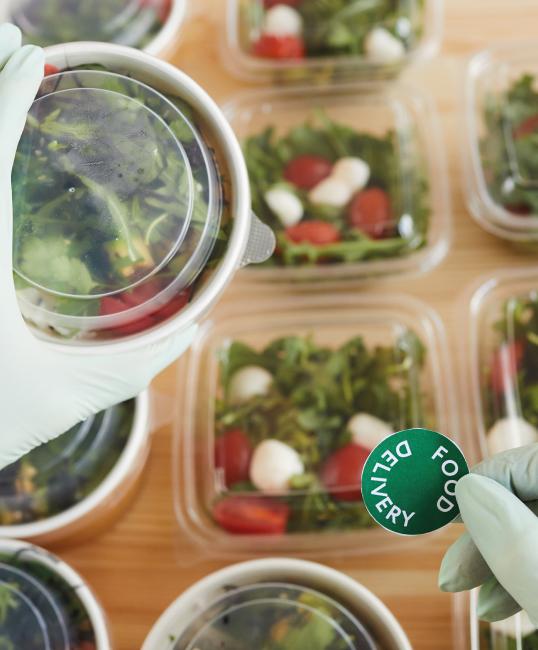 Web_DIP-en-Seguridad-e-Inocuidad-alimentaria2